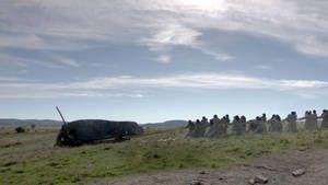 Dekodirani Stonehenge .