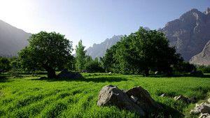 Não contes à minha mãe - Paquistão fotografia