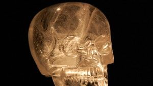 Crystal Skulls photo