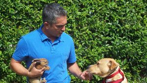 DOG WHISPERER CON CESAR MILLAN (Seconda stagione) foto