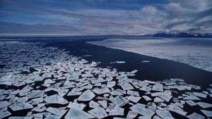 Earth Report 2009 照片