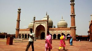 Delhi Billed