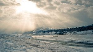 Yellowstone Winter photo