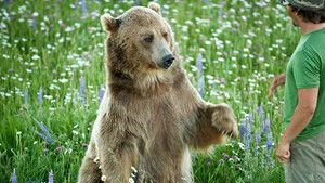Expedition Grizzly photo