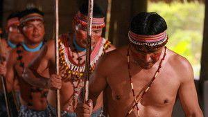 Amazónia fotó