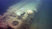 Hadtörténeti titkok a Dardanellák mélyén film