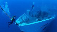 Wrecks to Reefs show