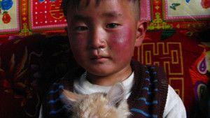 Chine, 2008 photo