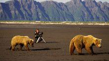 Andreas Kieling et les ours d'Alaska Voir la fiche programme