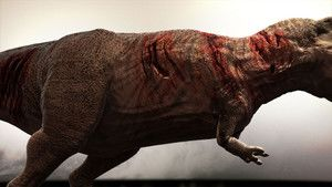 T. Rex trauma fot