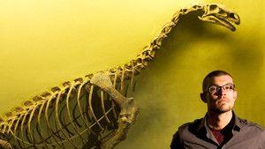 O monstro dos pântanos africanos fotografia
