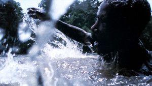 Příšera z afrických močálů fotografie