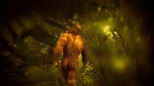 Opičí muž na Sumatře fotografie