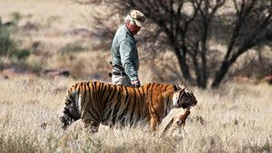 Tiger Man of Africa photo
