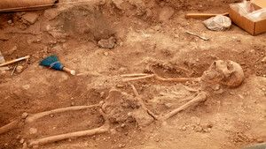 Digging Clues photo