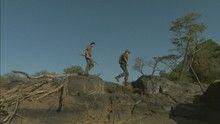 Orvvadászok nyomában film