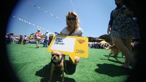 Petfest 2011 / 5 Haziran - Düşünce Balonları fotoğraf