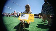 Petfest 2011 / 5 Haziran - Düşünce Balonları SAYFAYA GİT