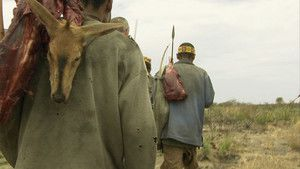 Kalahari Killers photo