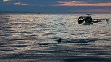 A legerősebb cápa film