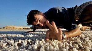 A Vörös-tenger óriásai fotó