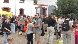 Sen zvířat 10.9.2011 - 2. část fotografie