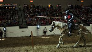 The Vegas Joust foto