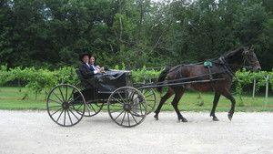 På innsiden av Amish-samfunnet Bilde