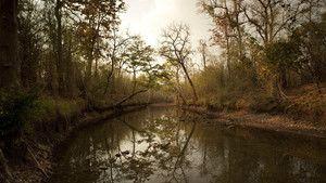 Les paysages cachés de l'Inde photo