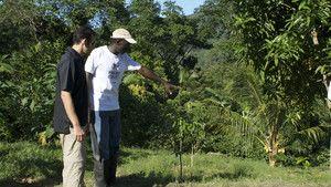 Jamaika fotoğraf