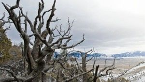 A Sziklás-hegység szelleme fotó