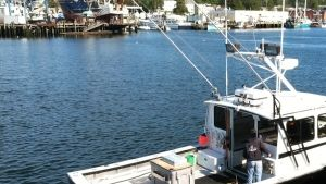 The Boats of Wicked Tuna photo