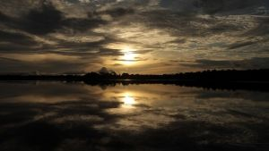 Brazil: The Amazon Basin photo