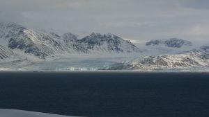 Drapieżnik z Arktyki zdjęcie