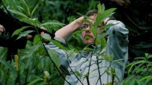 Orchideavadászok fotó