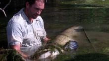 Monster Fish show