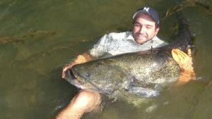 Monster Fish photo