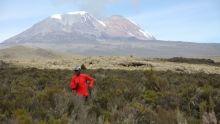 Kilimandzsáró film
