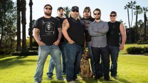Elite Dog Training photo