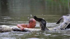 Handling a Giant Croc photo