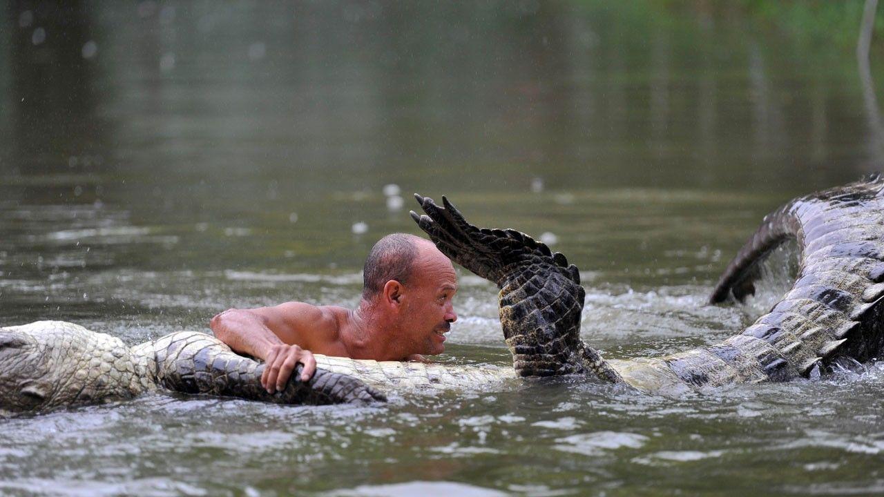 человек ловит крокодила