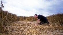 Les crop circles Voir la fiche programme