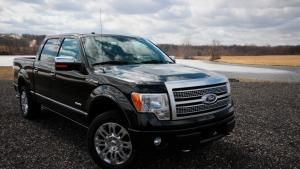 Ford F 150 photo