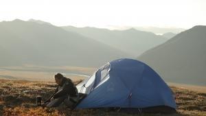 Bear Nomad photo