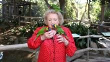 Betty White's Big Cats show