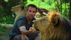 Lion Love photo