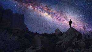 Cosmos Story photo