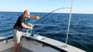 Rods, Reels and Tuna photo
