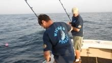 مهمة الصيد برنامج