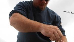 مهمة الصيد صورة